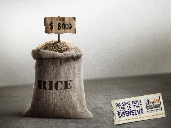 rice.preview