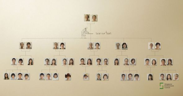 family_tree.preview